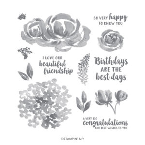 Beautiful Friendship Stamp Set Image