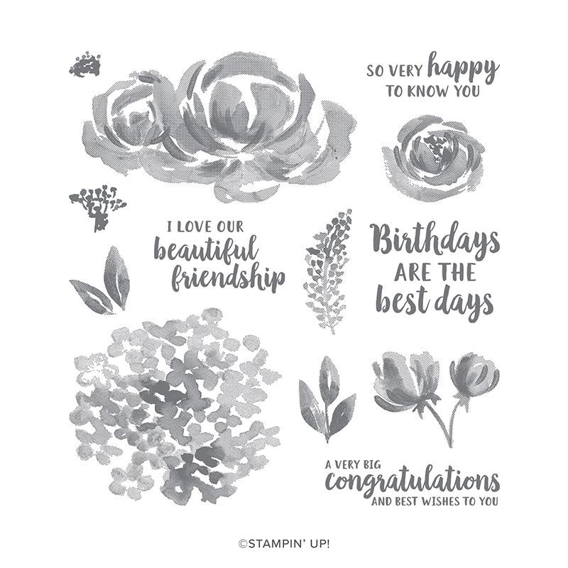 Beautiful Friendship Stamp Set Image