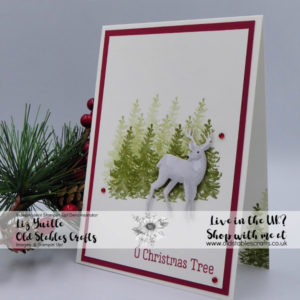 Most Wonderful Time Card stamped christmas trees and a sticker deer