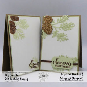 #SimpleStamping Saturday Meets Peaceful Boughs Casual and Avid