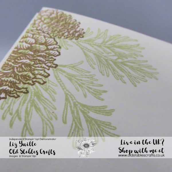 #SimpleStamping Saturday Meets Peaceful Boughs Simple Close Up