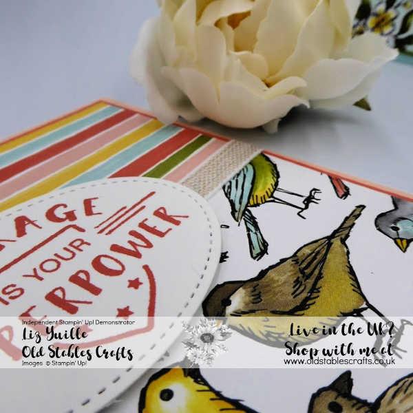 Bird Ballad Love It Chop It Sq Feminine version using Here's to Strong Women