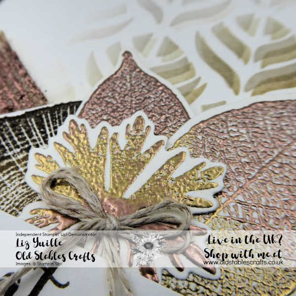 Rooted in Nature Two Tone Embossing close up and Mask Card for the Boys
