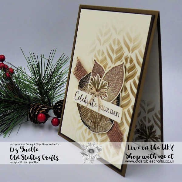 Rooted in Nature Two Tone Embossing and Mask Card for the Boys