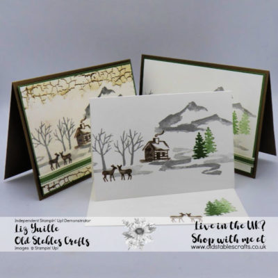 Snow Front and Crackle Paint cards