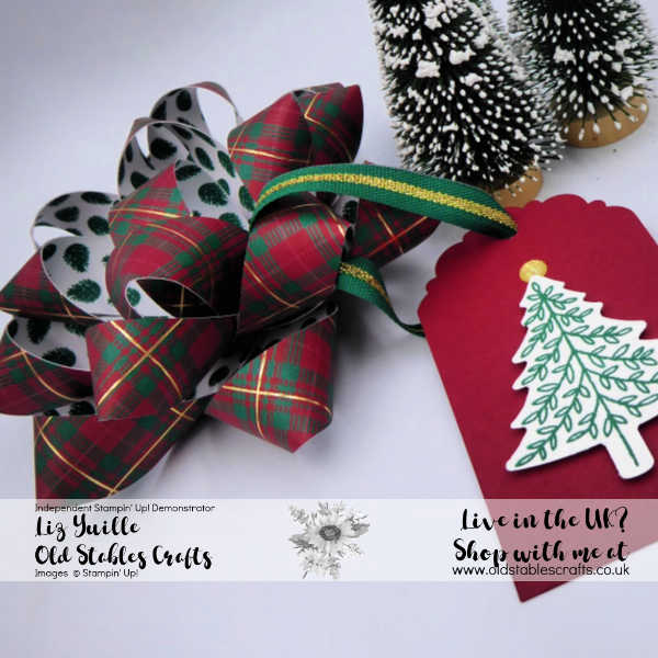 Wrapped in Plaid Gift Bow Close Up
