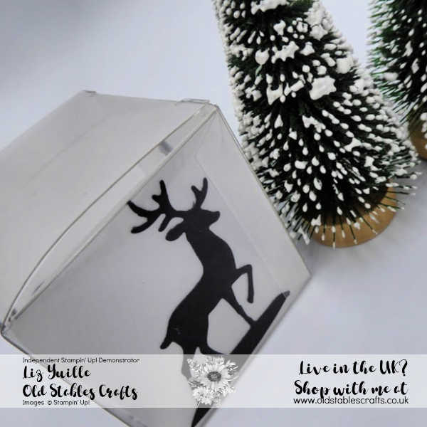 Tiny Treat Box Snow Globe Silhouette Box