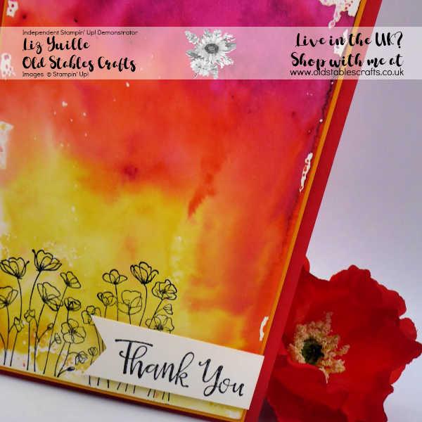 Customer Thank You Cards - November Close Up