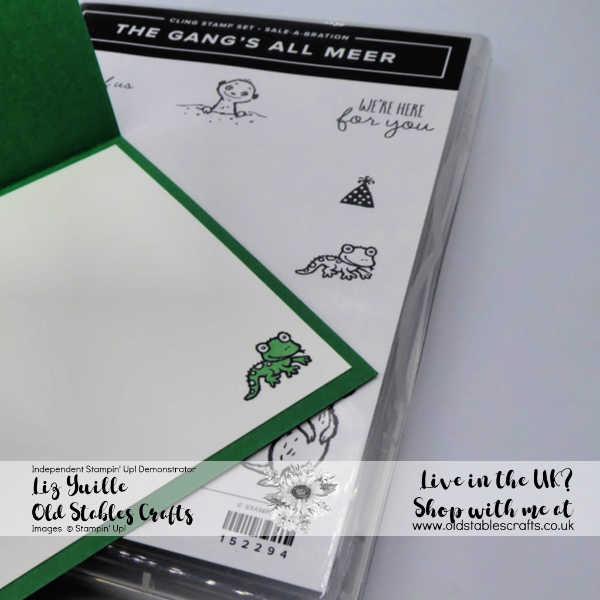 The Gangs All Meer Cute Cactus Card Inside