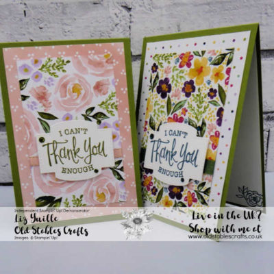 Kylie Bertucci's International Highlights Winners Blog Hop