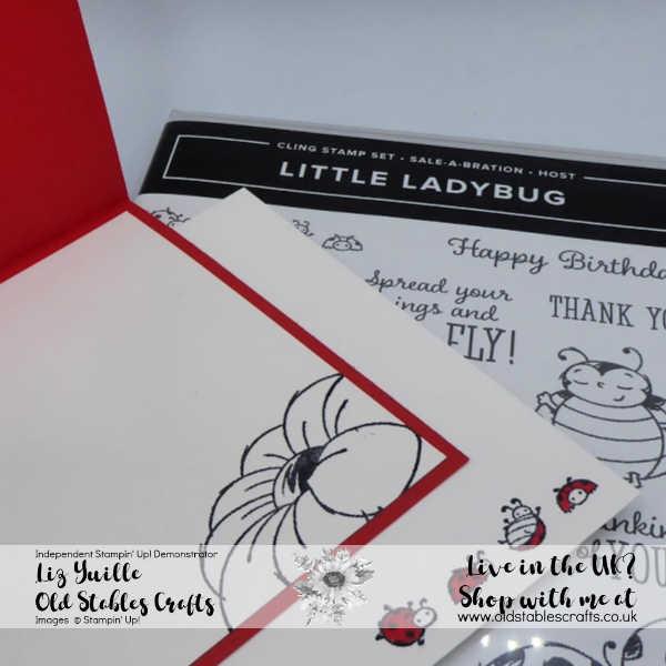 Little Ladybug Peekaboo Flip Card