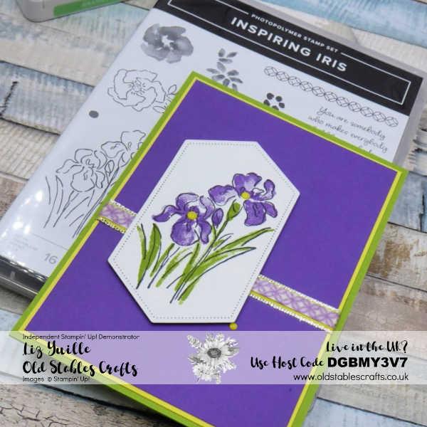 Inspiring Iris Spring cu1