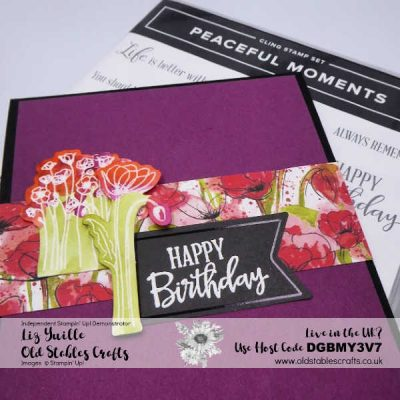 Quick but Stunning Peaceful Poppies Elements Card