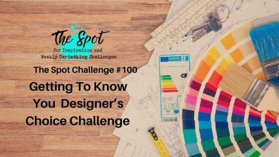 The Spot Challenge #100