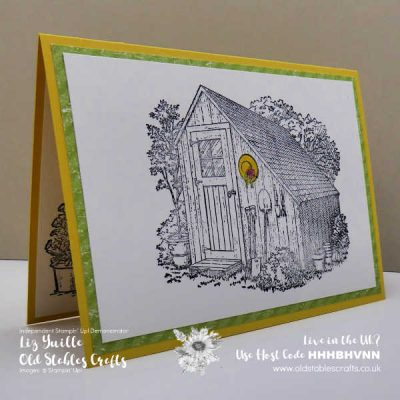 Garden Shed Spotlight Colouring