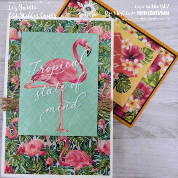 No Stamping Quick and Easy Tropical Oasis Cards oldstablescrafts.co.uk