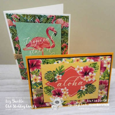 No Stamping Quick and Easy Tropical Oasis Cards