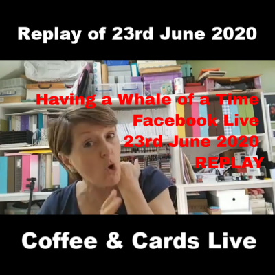 Having a Whale of a Time – Facebook Live 23rd June 2020 REPLAY