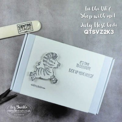 Mini Paper Pumpkin and Zany Zebra Gift Box