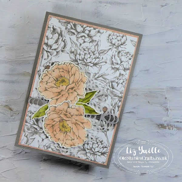 Prized Peony Stampin Up and Walk in the Woods Stampin Up OldStablesCrafts.co.uk