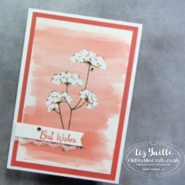 Queen Anne's Lace Cards OldStablesCrafts.co.uk