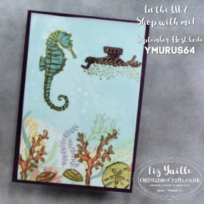 Seaside Notions with Gratitude Card for Kylie Bertucci Blog Highlights