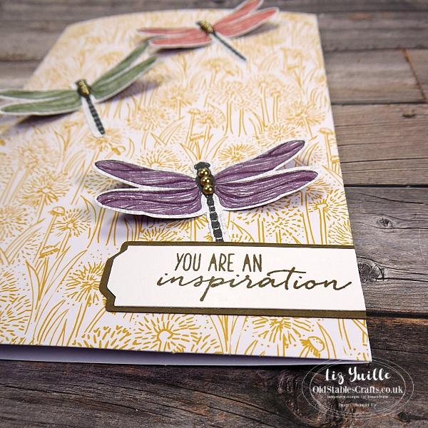 #SimpleStamping Saturday Dragonfly Garden cards OldStablesCrafts.co.uk