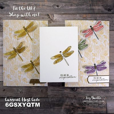 #SimpleStamping Saturday Dragonfly Garden cards OldStablesCrafts.co.uk