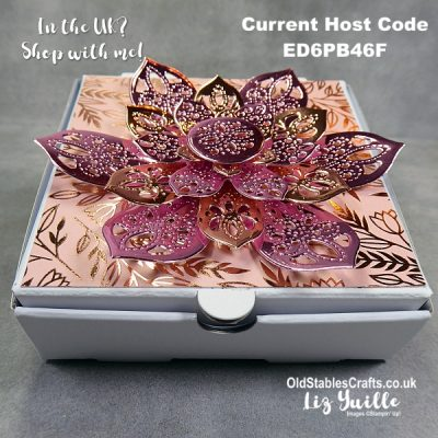 Stampin Up Delicate Petals Bundle Box and Card