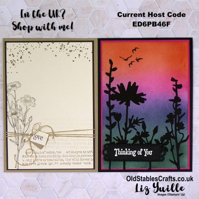 Facebook Live REPLAY – Featuring the Quiet Meadow Bundle from Stampin' Up!