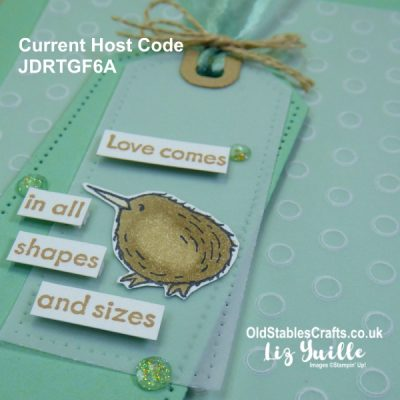 YouTube Live Crafting REPLAY with Liz – Count on Me