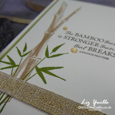 Quick Card with Bamboo Beauty