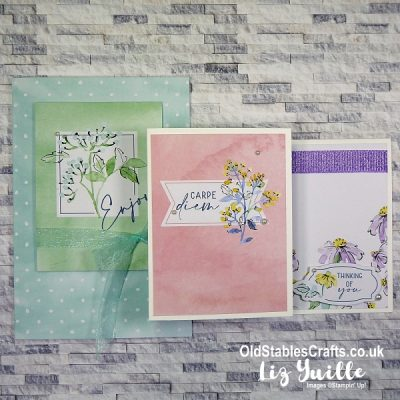 Hand Penned Memories and More – Quick and Easy Cards