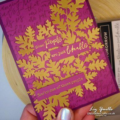 Beauty of Tomorrow Mini Catalogue Sneak Peek