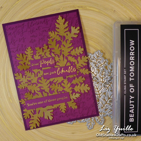Beauty of Tomorrow with Goldin Vellum Die Cut OldStablesCrafts.co.uk