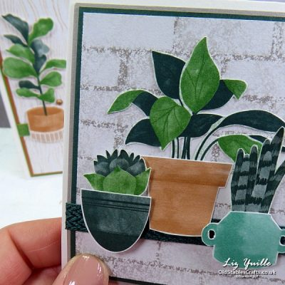 Bloom Where You're Planted Card using Designer Series Paper