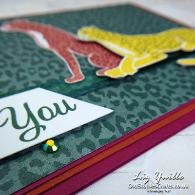 YouTube Live Crafting REPLAY with Liz – Paper and More Paper (for LESS!)