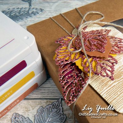 Gorgeous Leaves for One Stamp at a Time Design Team Blog Hop