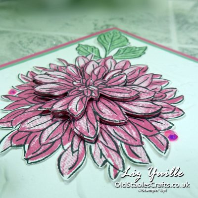 YouTube Live Crafting REPLAY with Liz – Delicate Dahlias