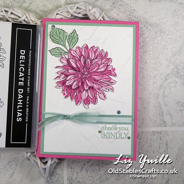 Delicate Dahlias Sale-a-Bration Stamp Set in Polished Pink OldStablesCrafts.co.uk