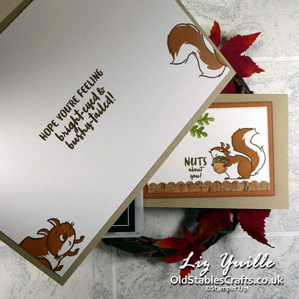 #SimpleStamping Saturday with Nuts about Squirrels OldStablesCrafts.co.uk