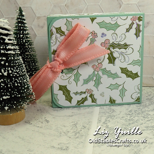 Stampin for Christmas Whimsy and Wonder Gift Box OldStablesCrafts.co.uk